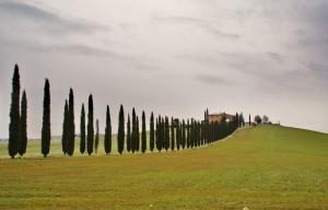 Toscana. Bella sempre