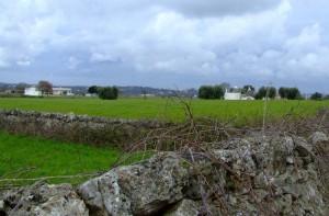 Valle d'Itria 1