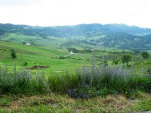 Veduta da Gorgoglione.