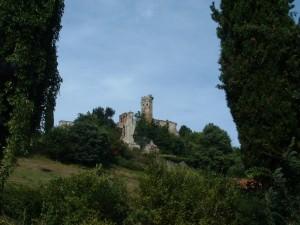 Un castello tra il verde dei boschi