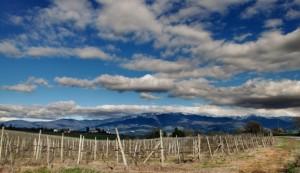 Le montagne Casentinesi viste dal Bombone