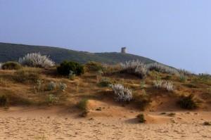 Le dune di Pistis e la torre Flumentorgiu