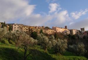 Castagneto Carducci_2