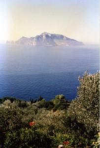 passeggiata a punta Campanella verso il mare e l'isola di Capri