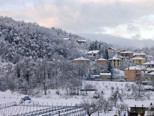 Cengio - La neve è rimasta sugli alberi. Dicono che ne scenderà ancora.....