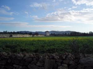 Le mura di Paestum