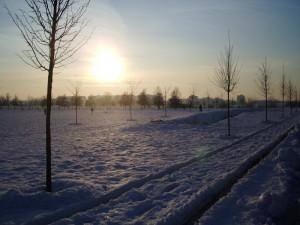 Tramonto sulla neve al parco.