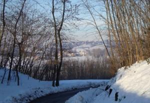 Veduta invernale di Carezzano dalla Strada dei Boschi