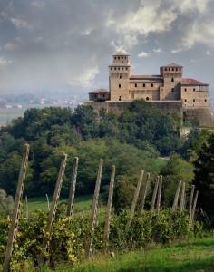 Vite ai piedi del castello