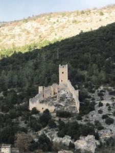 Il castello recinto di San Pio delle Camere