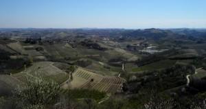 panorama di Montaldo Roero, dalla torre