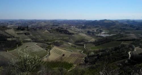 Montaldo Roero - panorama di Montaldo Roero, dalla torre