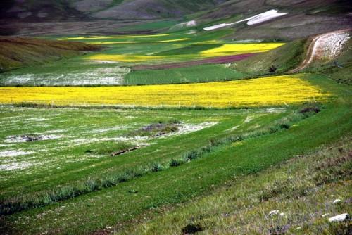 Norcia - Primavera