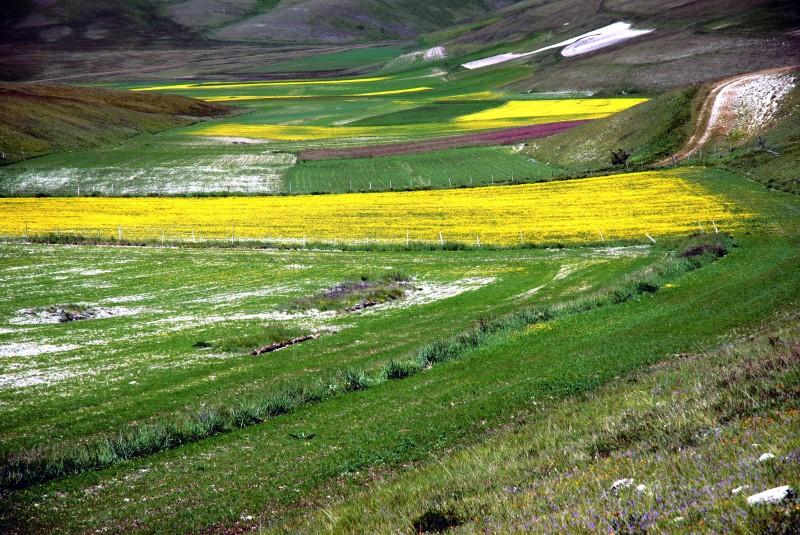 ''Primavera'' - Norcia