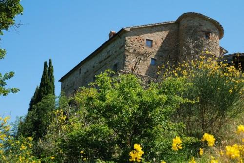 Montone - Rocca fra i fiori