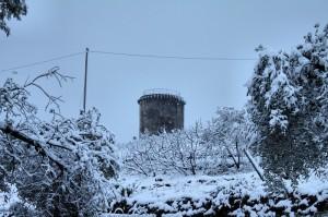 Torre Fra Gli Olivi Innevati