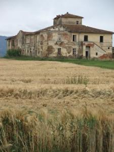 In campagna a Cortona - C'è nessuno?