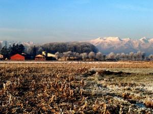 La rossa fattoria