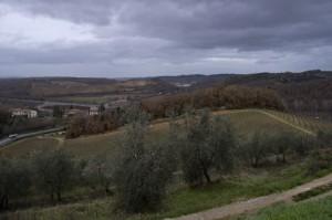 La Campagna Intorno A Monteriggioni