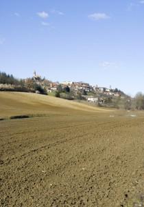 Panorama di Pecetto di Valenza.