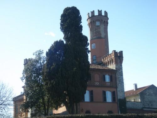 """Rivarolo Canavese - Particolare del """"Castellazzo"""""""