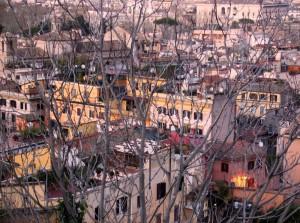Ragnatela di rami su Roma al tramonto
