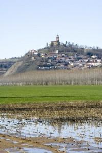 Il comune di Montecastello.