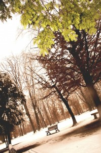 inverno in villa