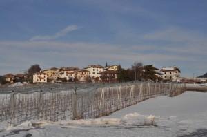 Romeno (Tn)