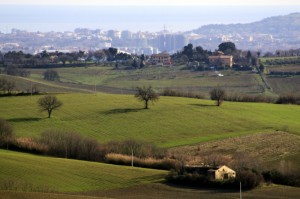 Le colline di Pesaro