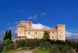 Gli Olivi e la Rocca