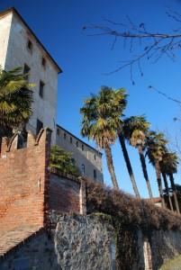 merli e palme al castello della Manta