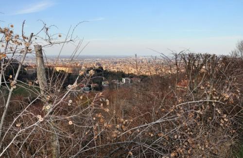 Bologna - Bologna vista dai colli