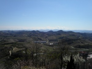 Montaldo Roero, panorama dalla torre