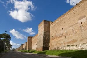 Le mura Aureliane da porta Latina a porta S. Sebastiano