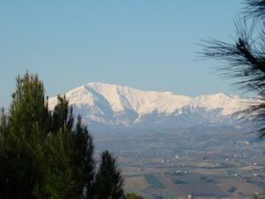 Monte Vettore visto da Acquaviva Picena