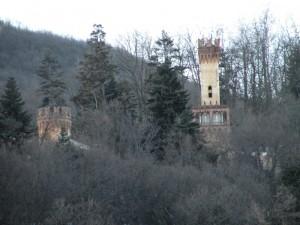 tra gli alberi le torri del castello del Roccolo