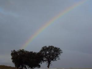 La strada sotto l'arcobaleno