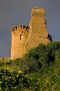 Circondato dalle arance il castello Poggio Diana