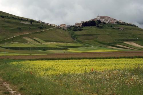 Norcia - tinta di giallo castelluccio