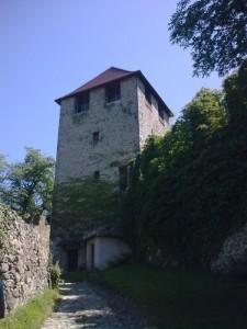 Castel Saben (scorcio)