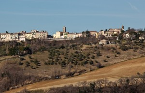 Maiolati e le sue colline