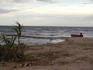 Canneti e Sabbia sulla spiaggia di Campomarino