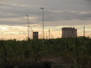Torre dell'Ovo si nasconde tra i canneti di Campomarino
