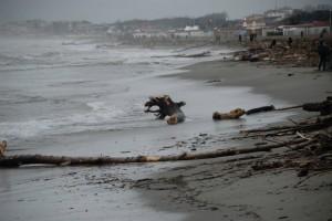 Mareggiata in scaduta sulla spiaggia di Marina