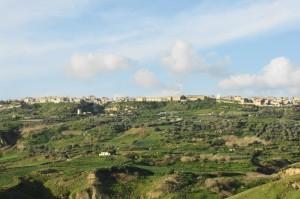 Niscemi Panorama