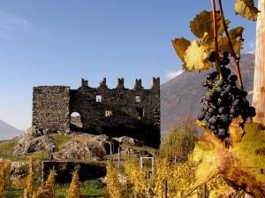 Un grappolo col castello