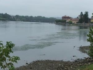 Il riva al Ticino,quel dì a Sesto Calende…