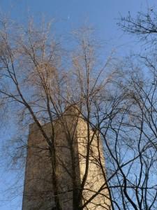 La torre, i rami e la luna