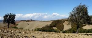 Strada delle Coste di Gaiano vista da Talignano..